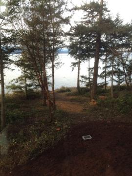 britton view prune
